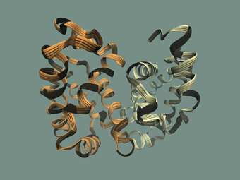 3D visualisation of proteins